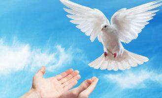 Nowenna przed świętem Zesłania Ducha Świętego
